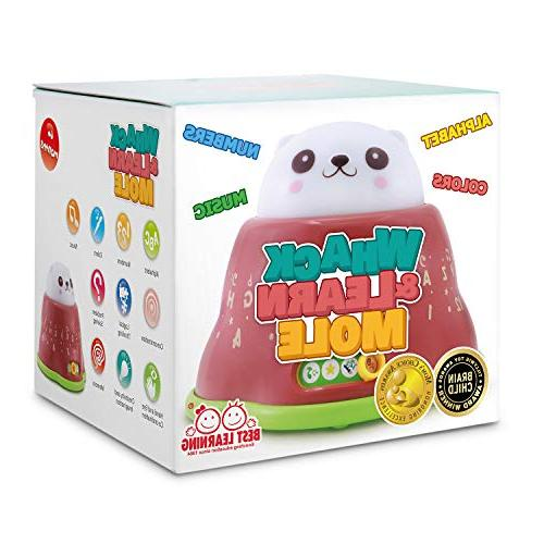 BEST LEARNING Learn Mole - Light-Up Toddler Toys for Months - Numbers & Night Babies